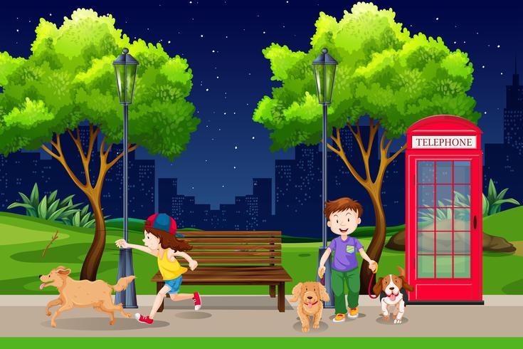 Mensen in het park 's nachts