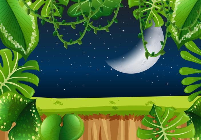 Moldura de floresta à noite vetor