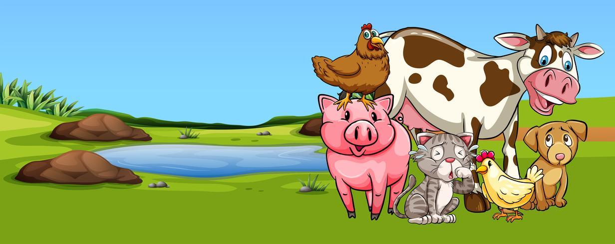 Många typer av djur på gården vektor
