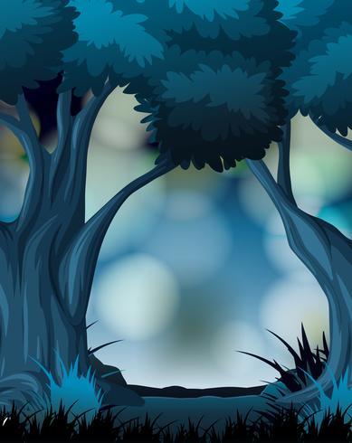Um fundo escuro da floresta