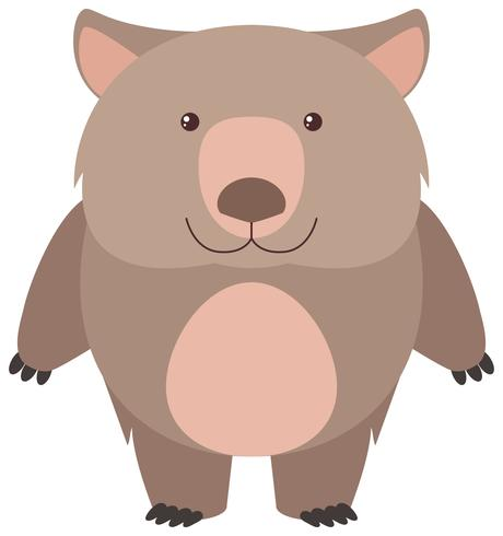 Cute wombat with happy face vector