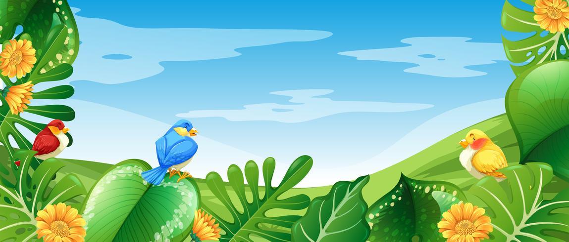 Pássaros na natureza paisagem