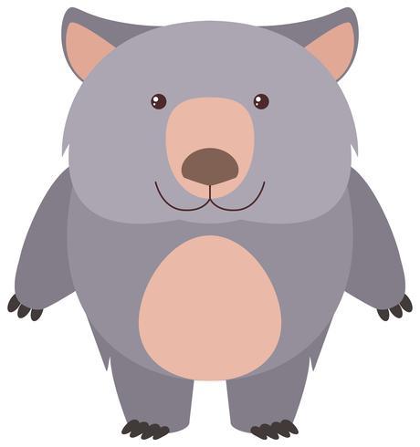 Wombat bonito com cara feliz