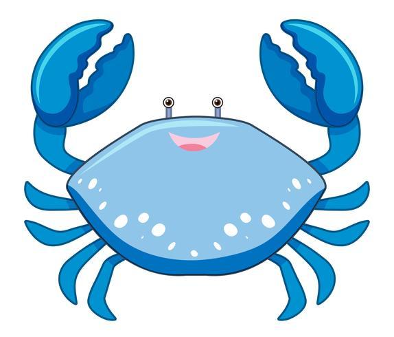 Um desenho animado caranguejo azul sobre fundo branco