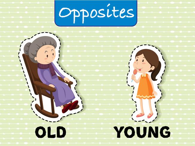 Opposite words for old and young