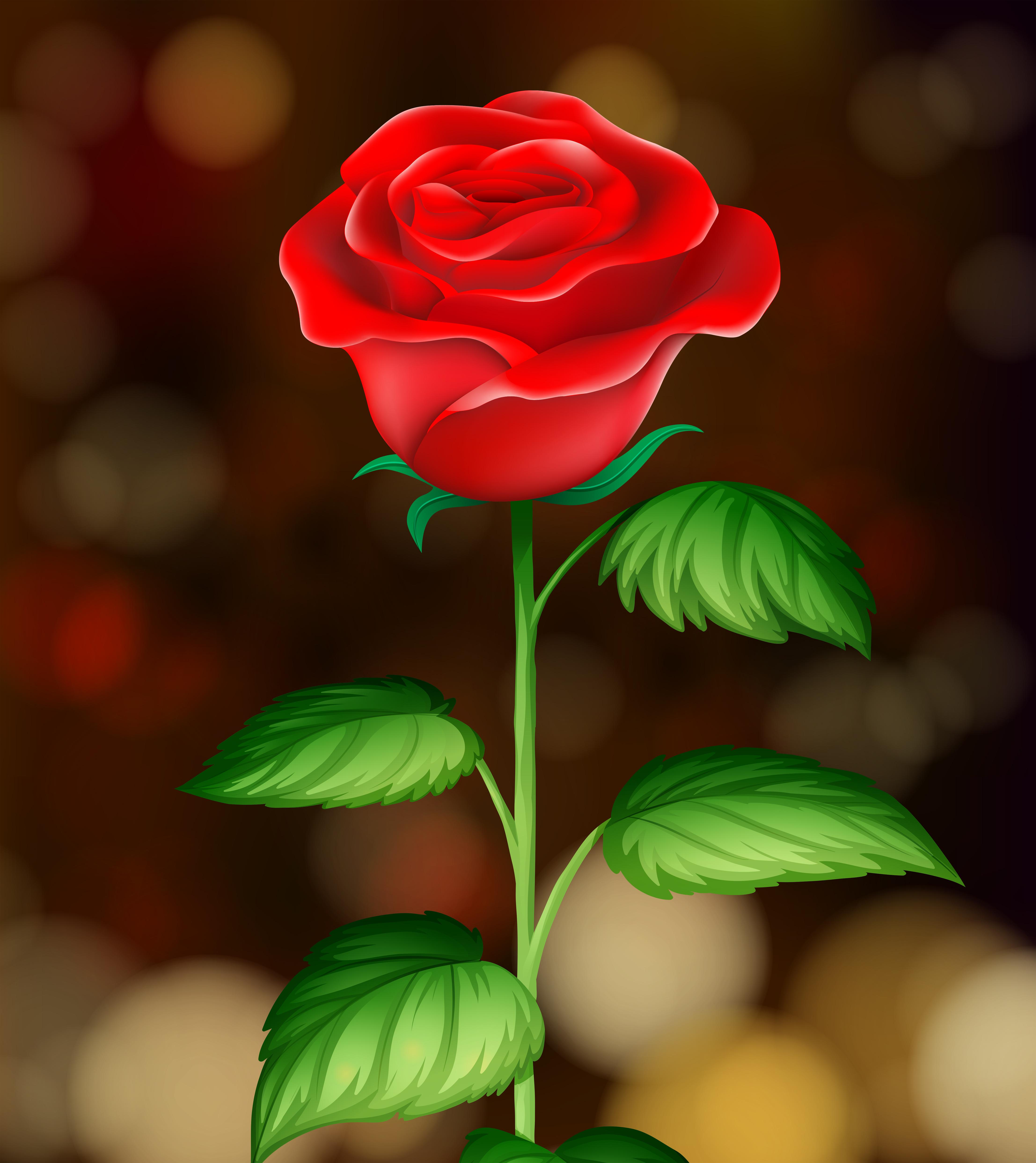 Single Red Rose Black Background Clip Art