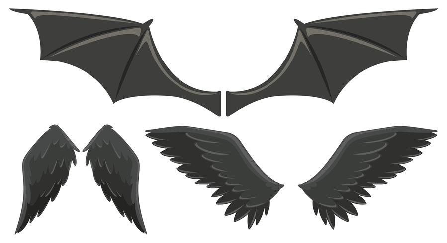 Set drei schwarze Flügel