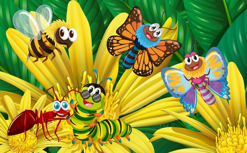 Different types of insects on yellow flower