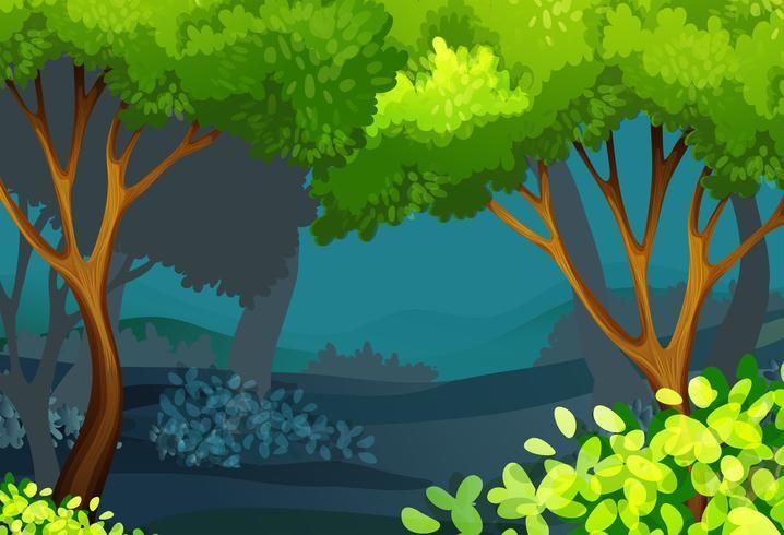 Escena del bosque con arboles y arbustos.