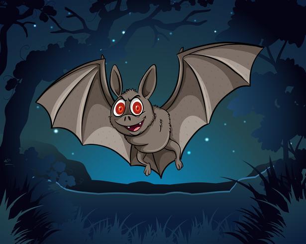 Murciélago salvaje volando en la selva en la noche