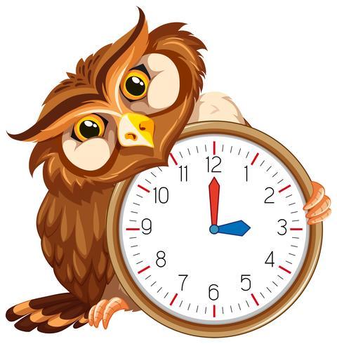 Eine Eule auf moderner Uhr