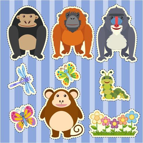 Design adesivo per diversi tipi di scimmie