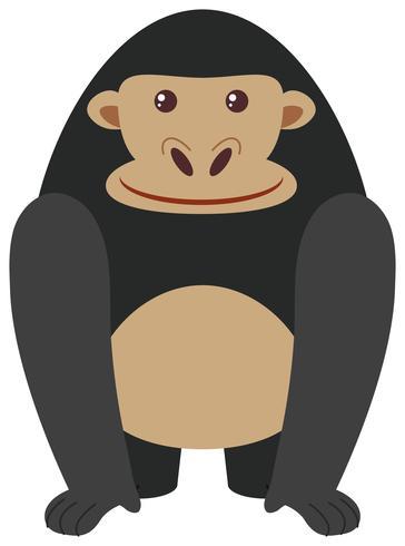 Schwarzer Gorilla auf weißem Hintergrund