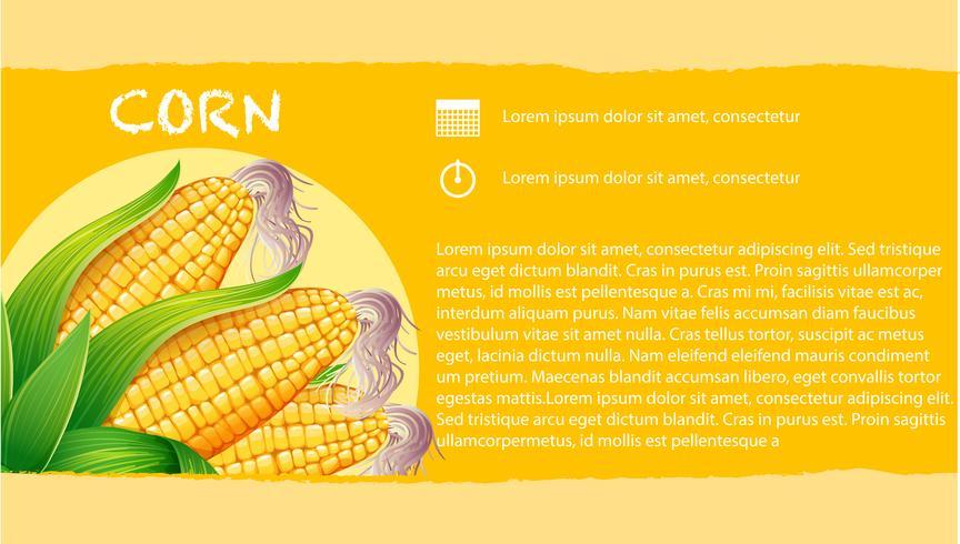 Infographie avec du maïs en épi