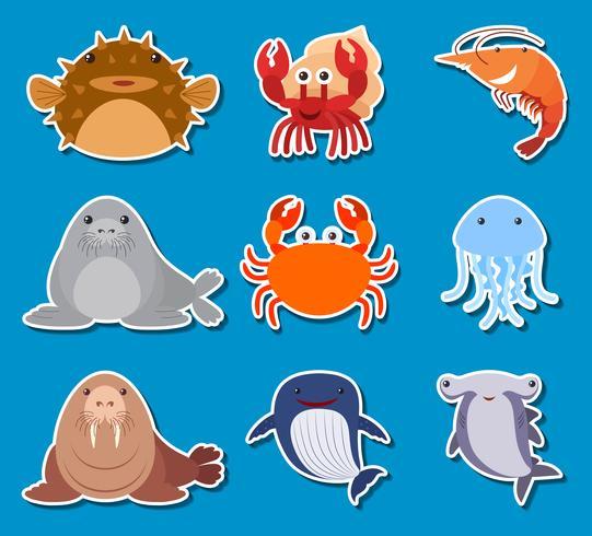 Sticker design for sea animals vector