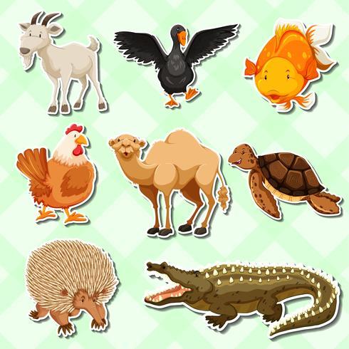 Design da etiqueta com muitos animais