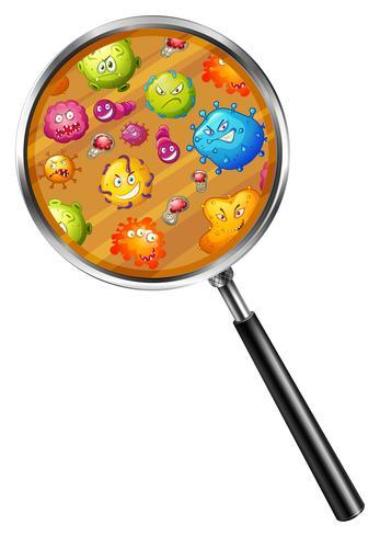 Närbild på bakterier