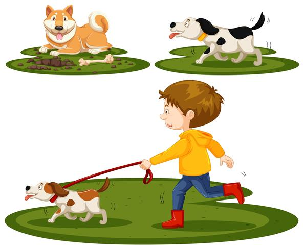 Set of boy and dogs