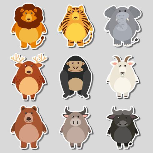 Sticker set with wild animals on gray background vector