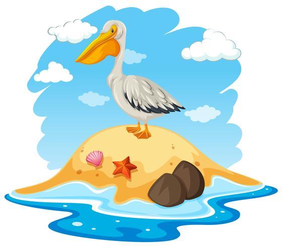 Pelikaanvogel op klein eiland