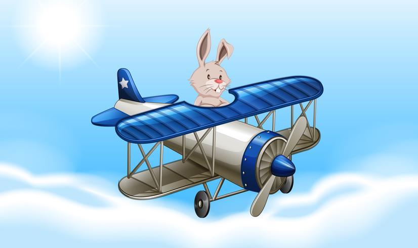 Coniglio volare un aeroplano scarica gratis arte vettoriale