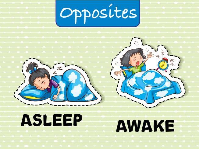 Parole opposte per addormentarsi e svegliarsi