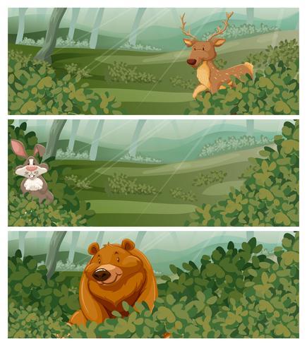Animali selvatici nella foresta durante il giorno