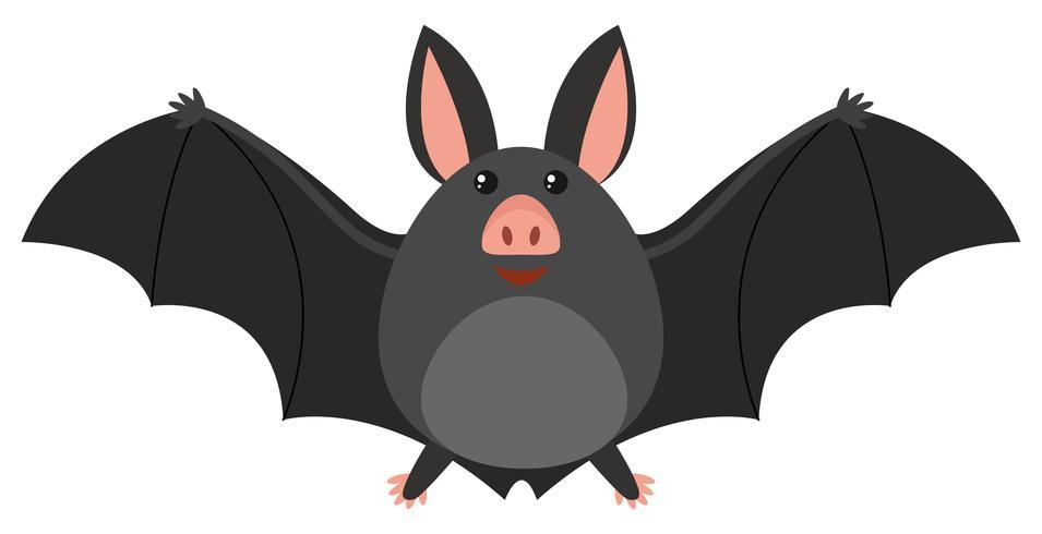 Happy bat on white background