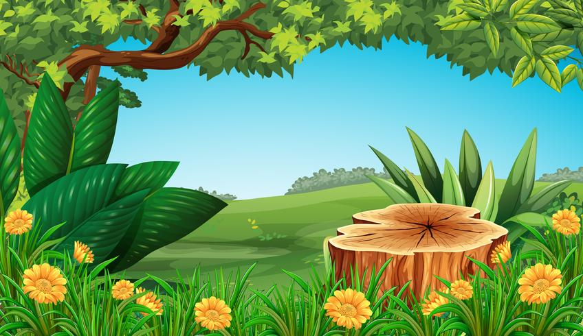 Scene with stump tree and field vector