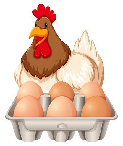 Happy Hen e le uova
