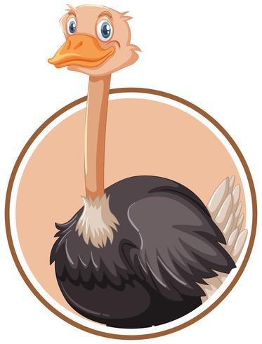A ostrich sticker template