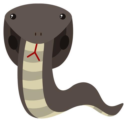Serpiente cobra en color gris