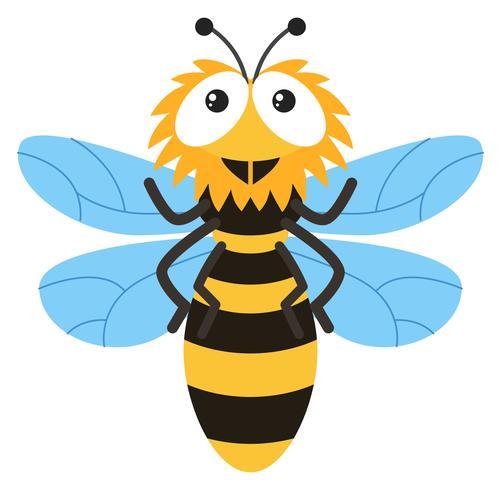 Nettes Bienenfliegen auf weißem Hintergrund