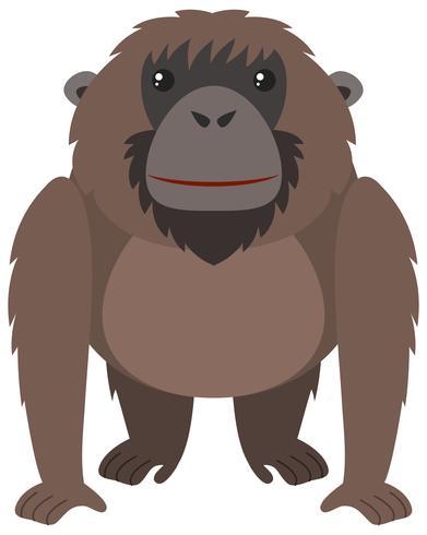 Brown orangutan with happy face