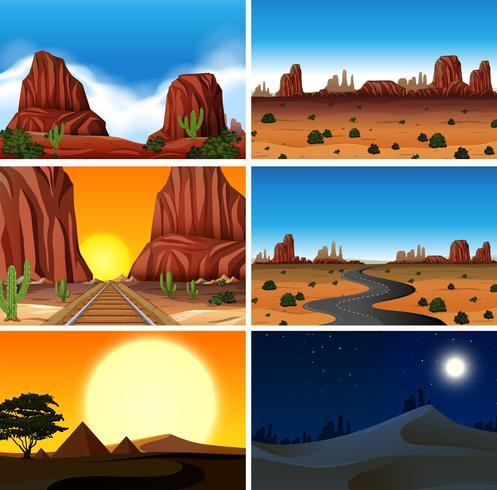 Ensemble de différentes scènes du désert