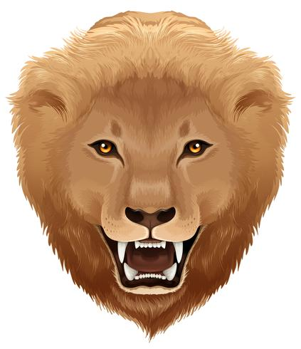 pathera leo
