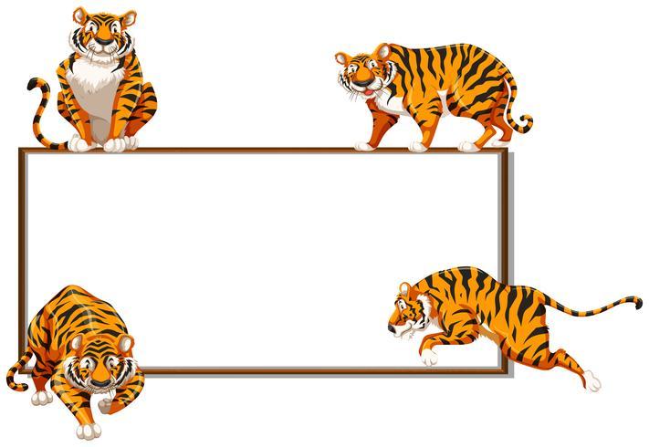 Grenzschablone mit vier wilden Tigern