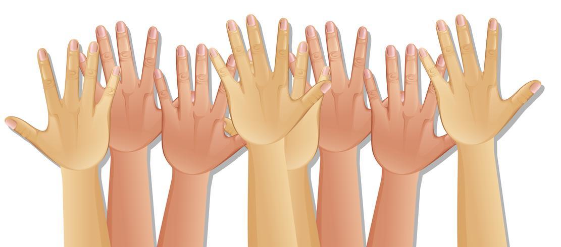 Menschliche Hände auf weißem Hintergrund