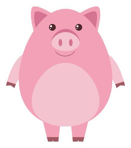 Rosa Schwein mit rundem Körper