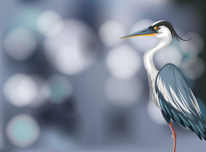 A heron on blurry background vector