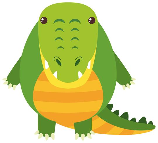 Crocodilo bonito no fundo branco vetor