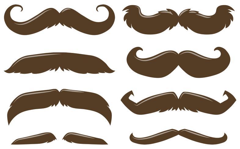 Diversi tipi di baffi in colore marrone