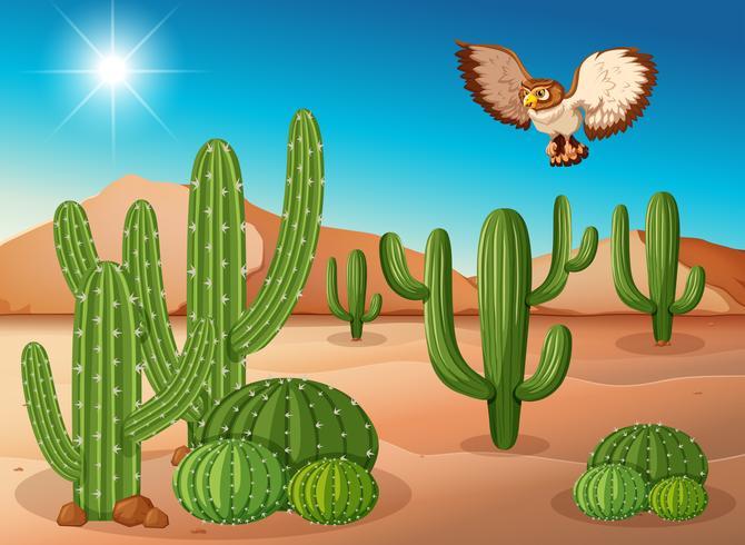 Coruja voando sobre o cacto no deserto