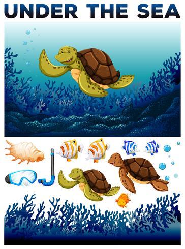 Tema do oceano com vidas subaquáticas