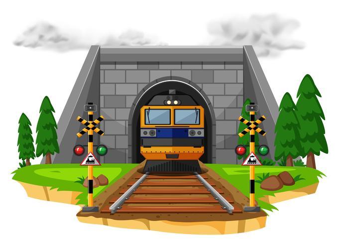 Passeio de trem na ferrovia
