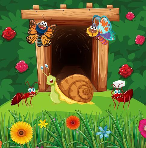 Viele Insekten vor dem Tunnel