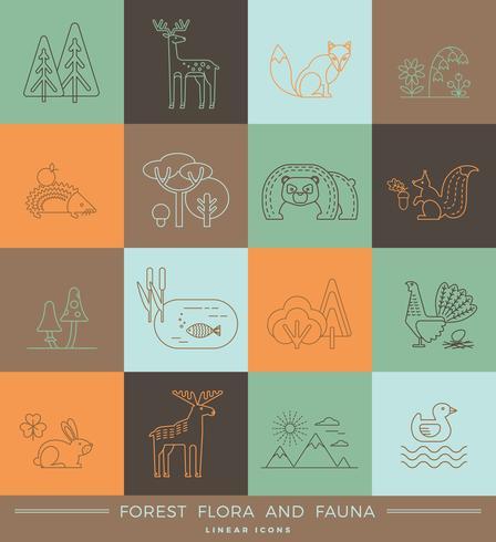 Vector iconos lineales de flora y fauna forestal.