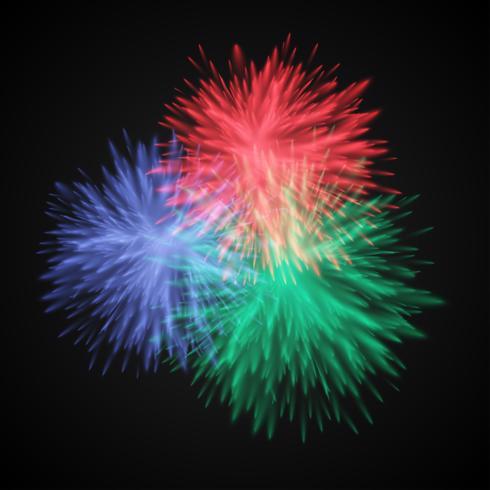 Explode colorido / flores, ilustração vetorial