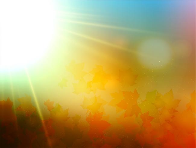 Folhas de outono com cenário embaçado, vetor