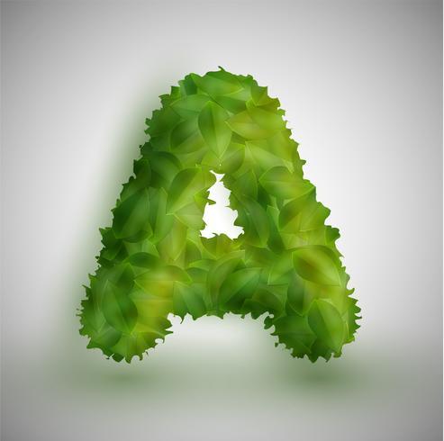 Una carta hecha por hojas, vector.